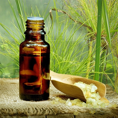 Papyrus Öl