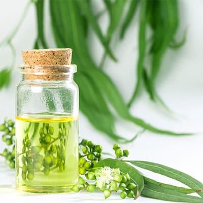Eucalyptusöl
