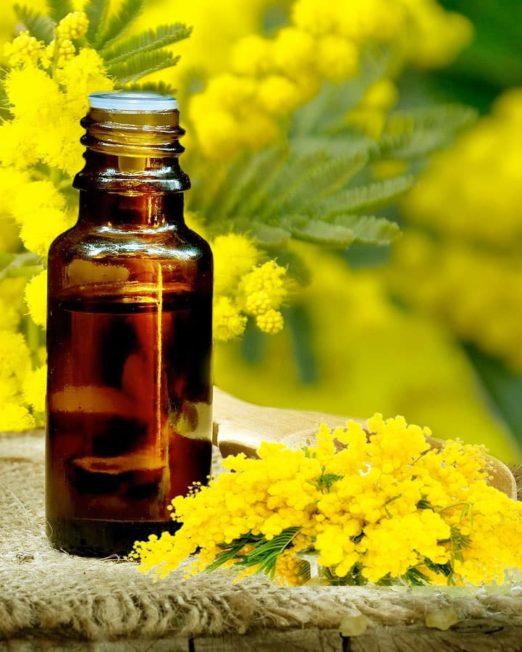 Mimosenöl